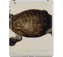 Tortoises terrapins and turtles drawn from life by James de Carle Sowerby and Edward Lear 055 iPad Case/Skin