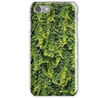 Ivy Wall iPhone Case/Skin