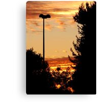 Beautiful Red Sunset Canvas Print