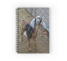 Goat - Portrait Spiral Notebook
