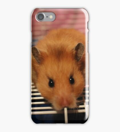 Syrian Hamster iPhone Case/Skin