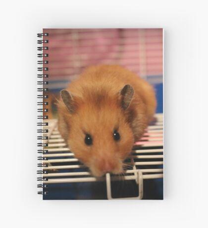 Syrian Hamster Spiral Notebook