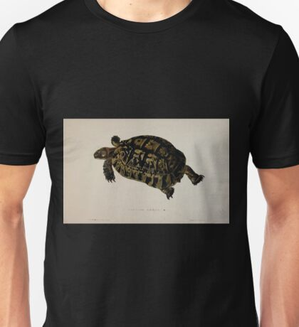 Tortoises terrapins and turtles drawn from life by James de Carle Sowerby and Edward Lear 017 Unisex T-Shirt