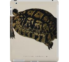 Tortoises terrapins and turtles drawn from life by James de Carle Sowerby and Edward Lear 017 iPad Case/Skin