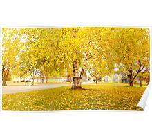 LG G5 Golden Autumn Poster