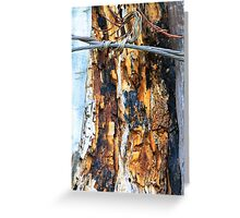 Restricted wood Greeting Card