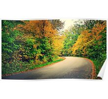 LG G5 Autumn Road Poster