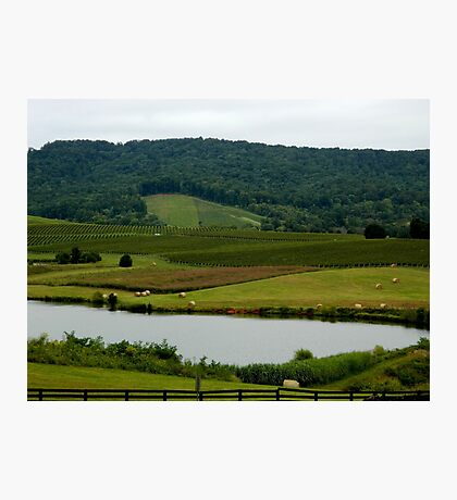 How Green Is My Valley.........      ^ Photographic Print