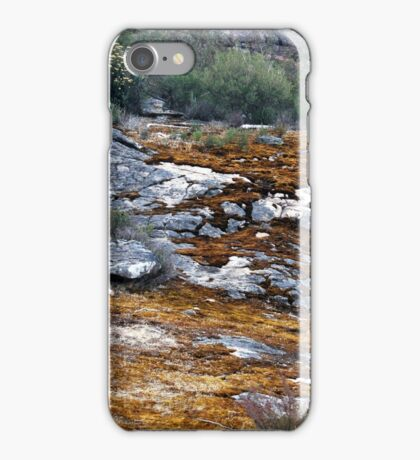 Aged and Covered with moss iPhone Case/Skin