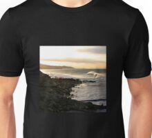 Seals at Sunrise Unisex T-Shirt