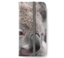 Close-up on Australian koala bear native animal iPhone Wallet/Case/Skin