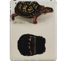 Tortoises terrapins and turtles drawn from life by James de Carle Sowerby and Edward Lear 022 iPad Case/Skin