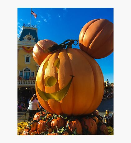 Time for pumpkins!  Photographic Print