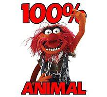 Muppets 100 Animal oder Geburtstagsgeschenk Photographic Print