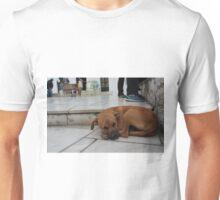 Sleeping Stray Unisex T-Shirt