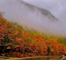 Leaf Peepers by Nancy Richard
