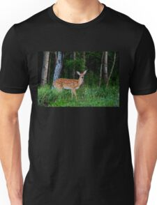 White-tailed fawn in the forest Unisex T-Shirt