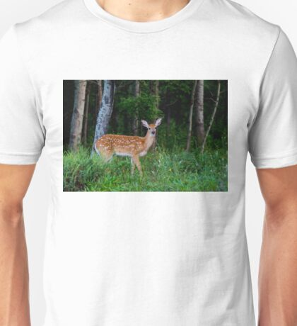 White-tailed fawn in the forest T-Shirt
