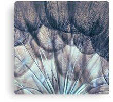 Garden Medusa Canvas Print