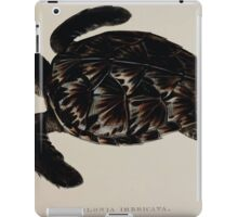 Tortoises terrapins and turtles drawn from life by James de Carle Sowerby and Edward Lear 057 iPad Case/Skin
