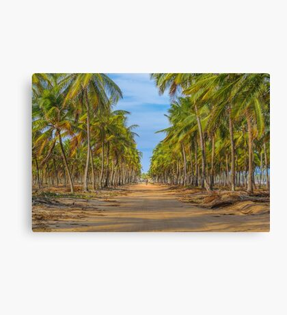 Topical Landscape Scene at Porto Galinhas Brazil Canvas Print
