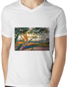 Backlit Bird of Paradise  Mens V-Neck T-Shirt