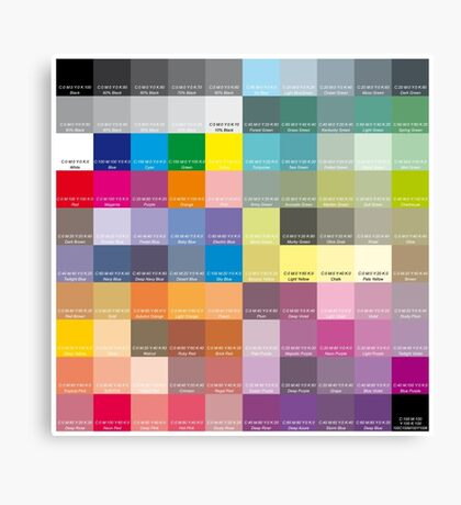 CMYK Scale Canvas Print