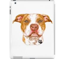 Pit Bull Red iPad Case/Skin