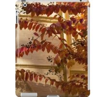 Dainty Branches - Warm Fall Colors - Washington, DC Facades iPad Case/Skin