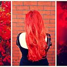 autumn red by ShellyKay