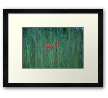 Hidden Poppies Framed Print