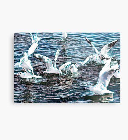seagull flying on sea Metal Print