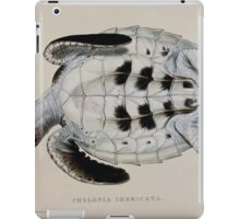 Tortoises terrapins and turtles drawn from life by James de Carle Sowerby and Edward Lear 058 iPad Case/Skin