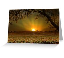 Sunrise in Vineyard Greeting Card