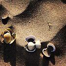 Beach pebbles by Jonesyinc