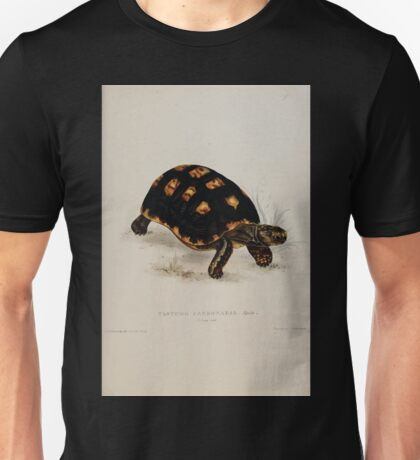 Tortoises terrapins and turtles drawn from life by James de Carle Sowerby and Edward Lear 004 Unisex T-Shirt