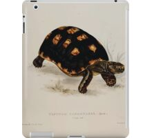 Tortoises terrapins and turtles drawn from life by James de Carle Sowerby and Edward Lear 004 iPad Case/Skin