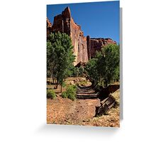Beauty in the Canyon Greeting Card