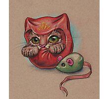 Daruma Cat  Photographic Print