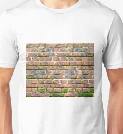 weathered brick wall with various shades of brick.  Unisex T-Shirt