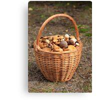 Basket with mushrooms Canvas Print
