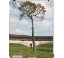 lonely tree symbol of life iPad Case/Skin
