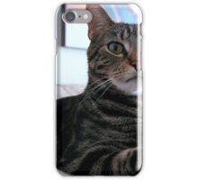 Cute cat .Valentina Averina Photography . BOSTON, MA. USA. iPhone Case/Skin