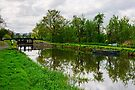 Fenniscourt Lock, Barrow Navigation, Bagenalstown, County Carlow by Andrew Jones