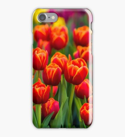 Red White Yellow Tulips iPhone Case/Skin