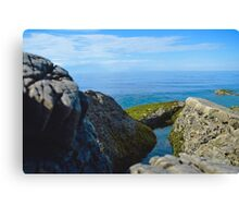 Seashore Rocks Covered In Moss Canvas Print
