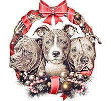 It's a Pit Bull Christmas Photographic Print