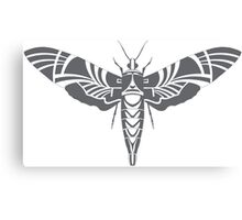 Moth grey Canvas Print