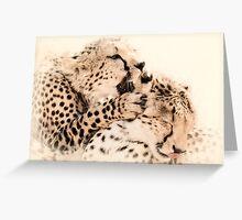 Love Whispers - Masai Mara, Kenya Greeting Card