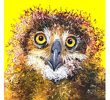 Owl painting on yellow background Photographic Print